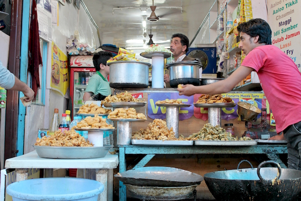 cost of travelling in india, food, srinagar